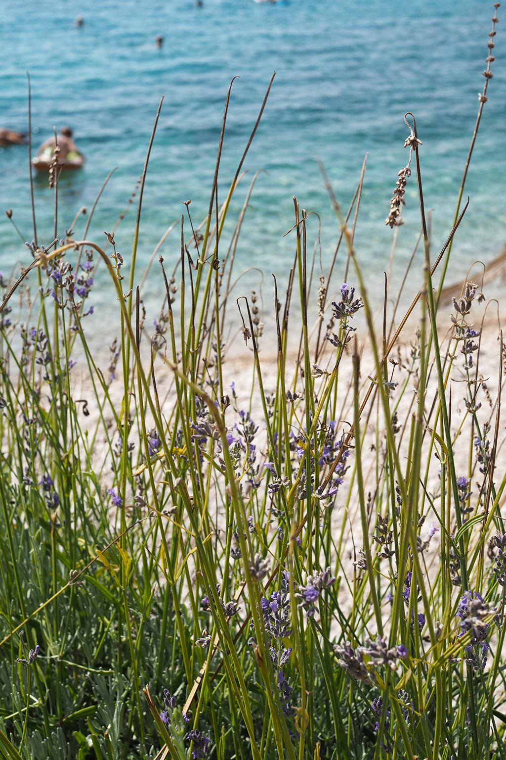 Laventelin tuoksua ja Makarskan Rivieran turkooseja rantoja