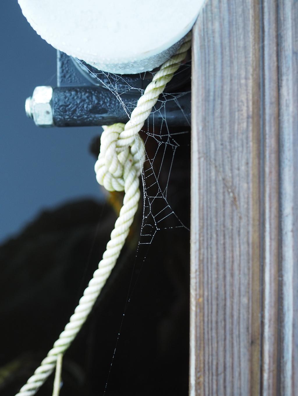Hämähäkin seitti laiturin nokassa